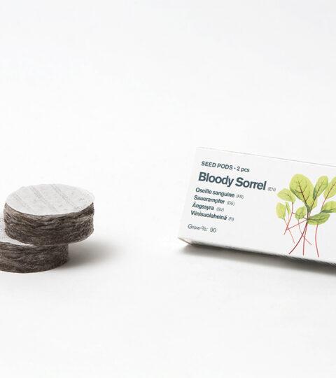 Tregren Bloody Sorrel (Sauerampfel)